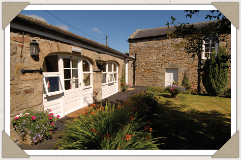 Bed & Breakfast, The Pheasant Inn